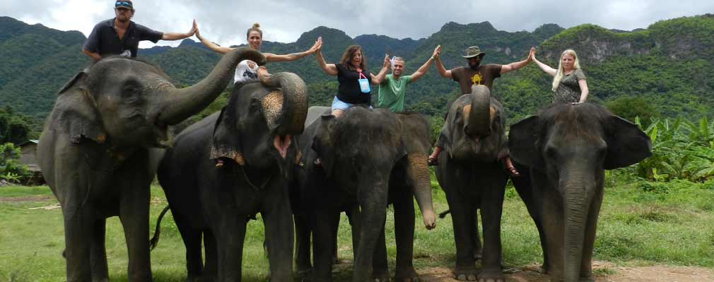 ED: Elephant Training Day Learn the commands for your elelphant Bath swim trekking
