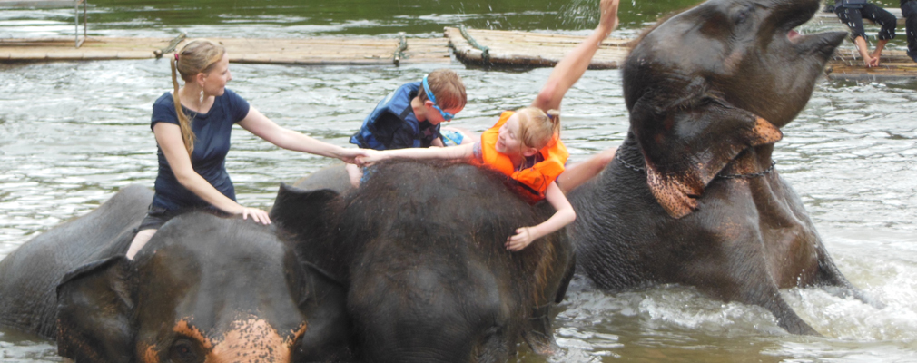 Floating Market Elephant Training & Bridge on River Kwai