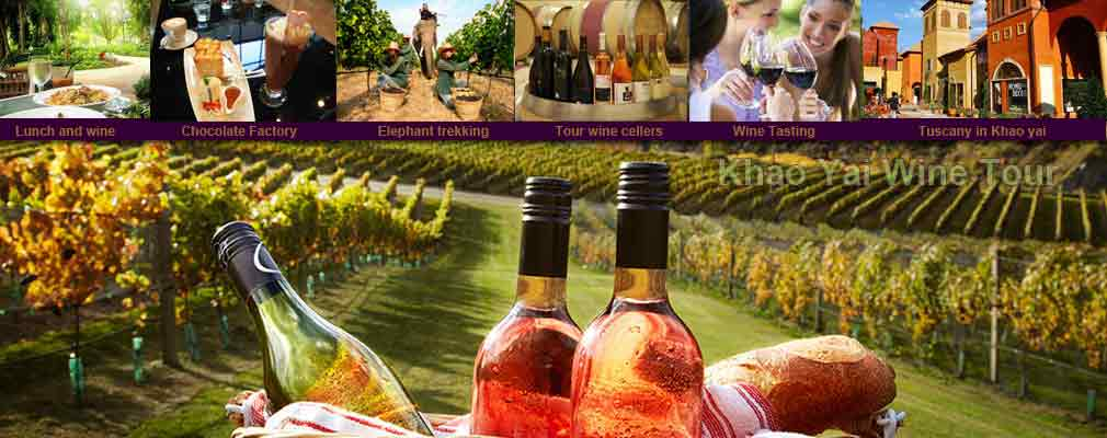 1 Day Wine Tour Visit Different Vineyards around Khao Ya1