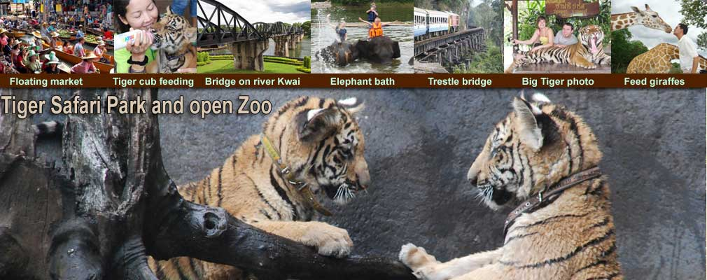 Floating Market Tigers Safari Park open zoo Elephants Training Bath swim trek and Bridge on the River Kwai