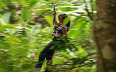 Zip line through the Jungle
