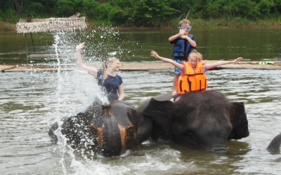 Training and bathing with elephants
