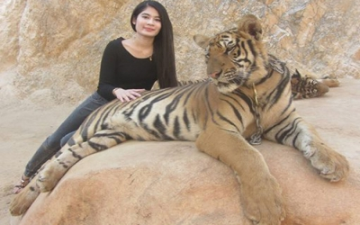 Tiger Temple Jan with Tiger