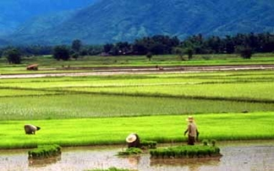 See Thai country side