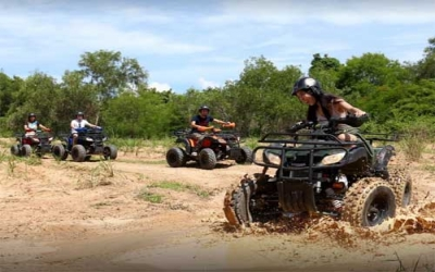Quad bikes elephant camp