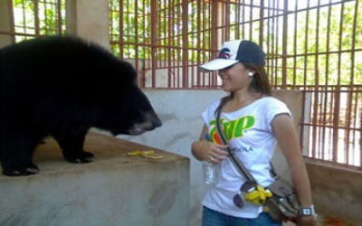 Talking to a bear