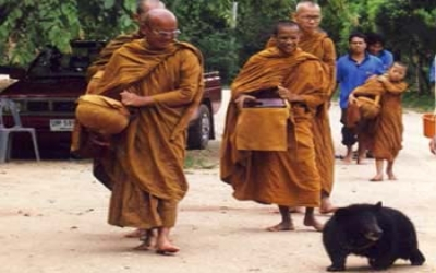 Monks walking a bear