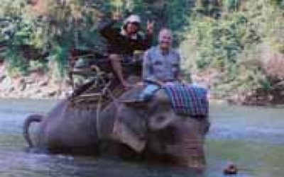 Thailand elephant riding