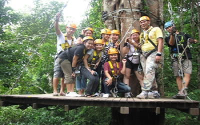 Tree top adventures zip line