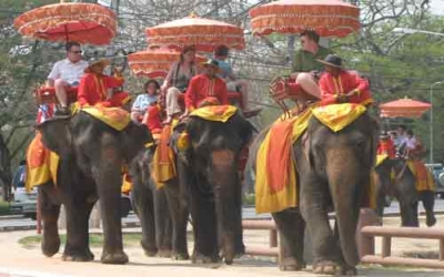 Elephant trekking tour Ancient temple