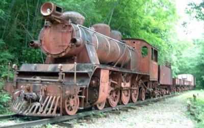 Jap train rusting up in jungle
